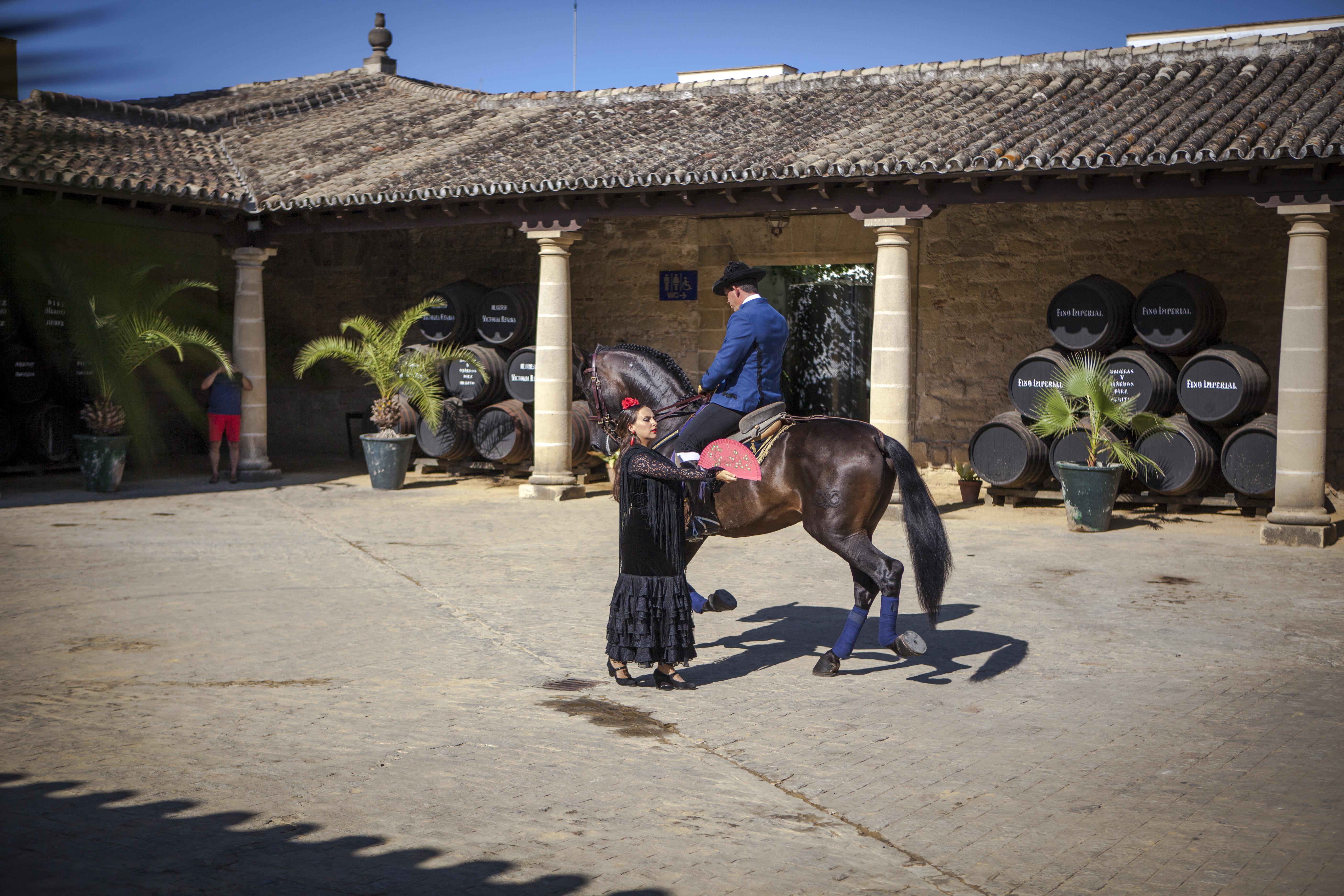 equestre-diezmerito-3